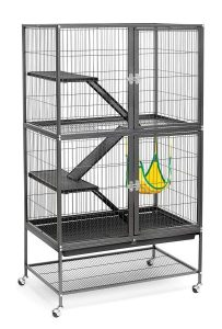 Prevue Hendryx Black Feisty Cage