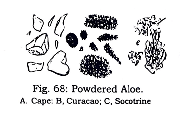 Juices Microscopical characters