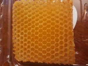 Honeycomb from Washington's Mt. Baker