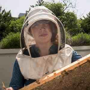 Sarah Common profile picture