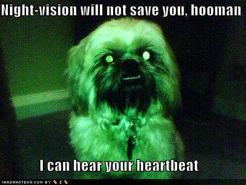 funny-dog-pictures-scary-dog-can-he