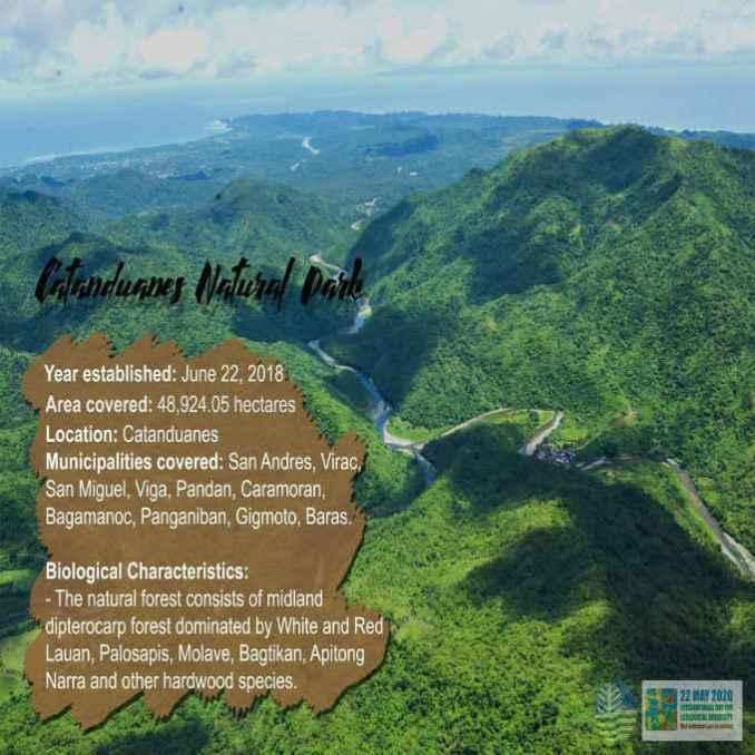 catanduanes natural park