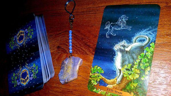 Stars (The Star) – Mystical Cats Tarot Reading