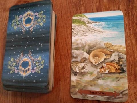 Three of Sea (Three of Cups) – Mystical Cats Tarot Readings