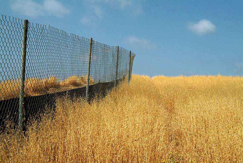 brueckner-fence-and-cloud