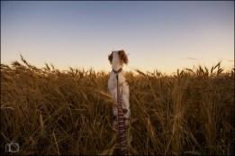 36-52 prairie dog