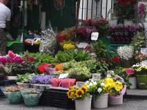 flower stalls