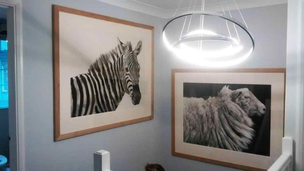 Two large charcoal pictures of a Zebra and a sheep hanging in a stairwell in Arundel.
