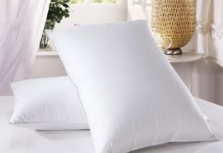 down dreams standard pillow review