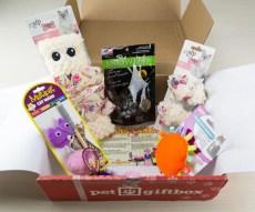 Pet Gift Box Review