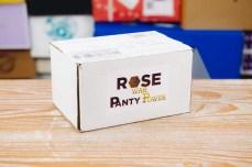 Rose War Panty Power Review