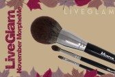 LiveGlam MakeUp Brushes