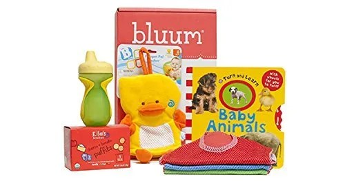 mom and baby subscription box