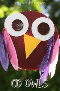 CD-OWLS