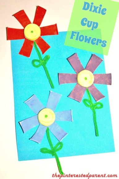 Dixie Cup Flowers 3