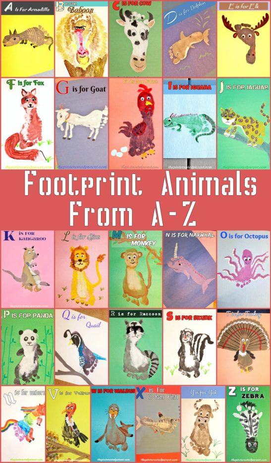 Footprint-Animals-From-A-Z