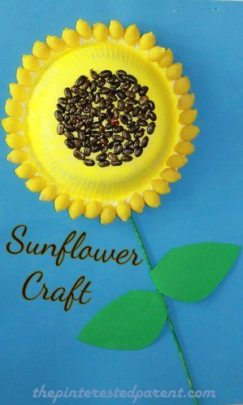 Sunflower Craft made out of lentils, pasta shells & paper bowls. A great flower arts & craft project for the kids for spring.