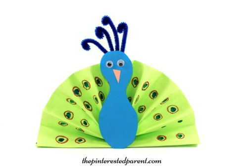 Folded construction paper fan peacock - arts & crafts for kids