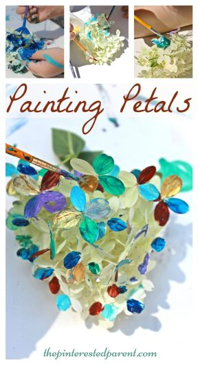 Painting flower petal - nature arts & crafts activities for kids. This is a wonderful spring & summer art project that you can do outdoors. - Great for all ages.