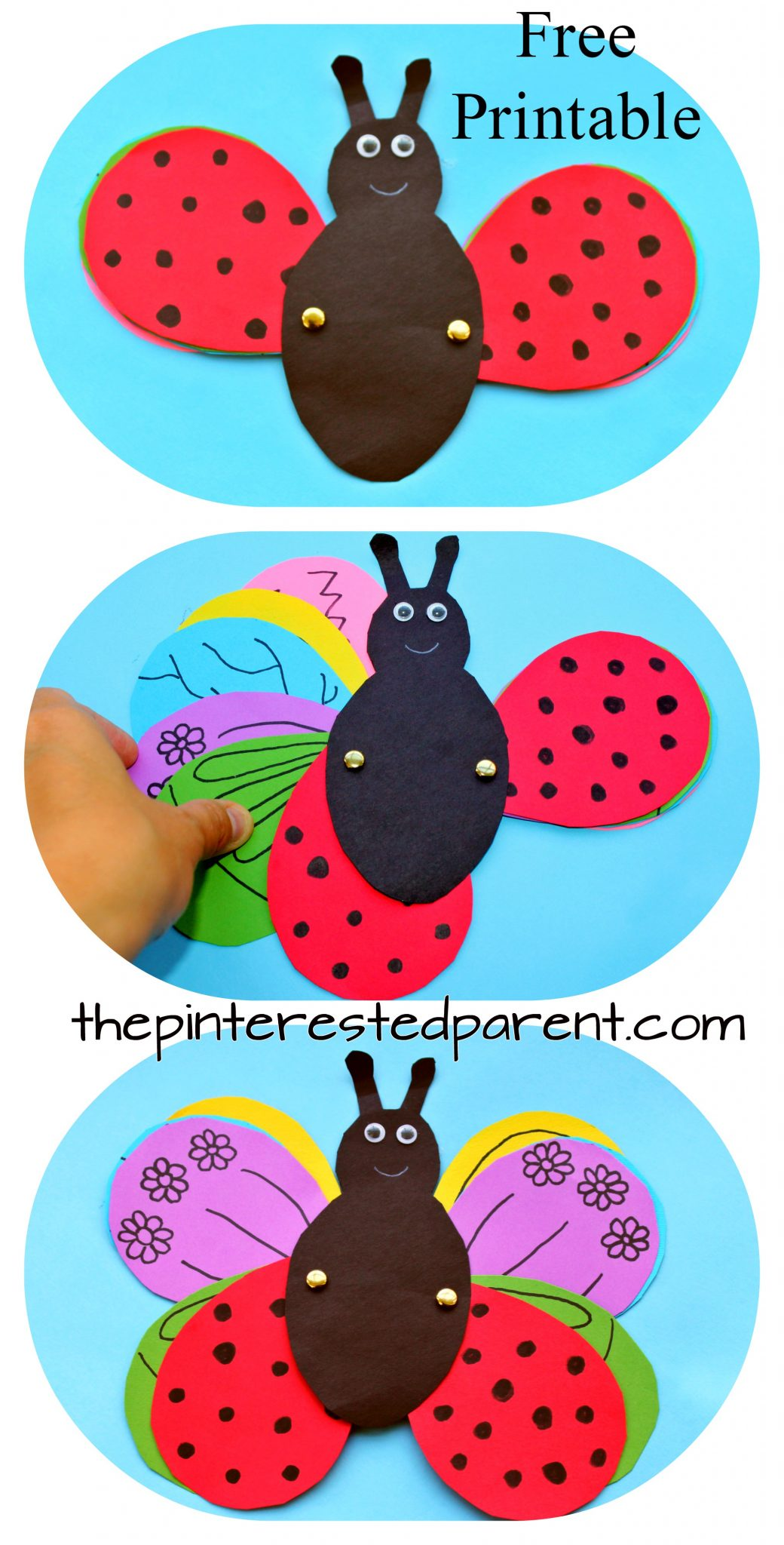 Transforming Ladybug Butterfly Craft – The Pinterested Parent