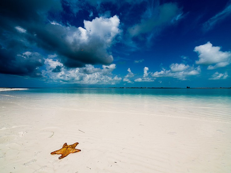 Starfish Beach Bocas del Toro, Panama