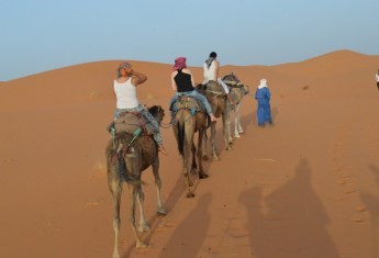 Spending a Night in the Sahara Desert