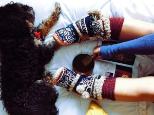 cozy-at-home-with-dog