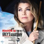 Grey's Anatomy: 12ª Temporada (2016) WEB-DL 720p Dual Áudio Torrent