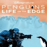 Pinguins: Vida ao Extremo Torrent (2020) Dual Áudio 5.1 / Dublado WEB-DL 720p e 1080p – Download