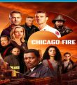 Chicago Fire: Heróis Contra o Fogo 9ª Temporada Torrent (2020) Dual Áudio / Legendado WEB-DL 720p | 1080p – Download