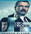 Blue Bloods – Sangue Azul P.I. 11ª Temporada Torrent (2020) Legendado WEB-DL 720p | 1080p – Download