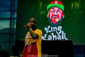 2019, Aug 1-King Kahali-Stir Cove-Winsel Photography-2