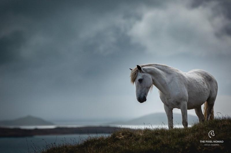Hebridean Tour — Scotland Highlands & Islands