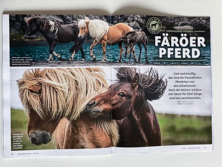 Publication in Cavallo 01/2021