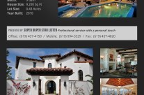 Real Estate Listing Sales Flyer-1