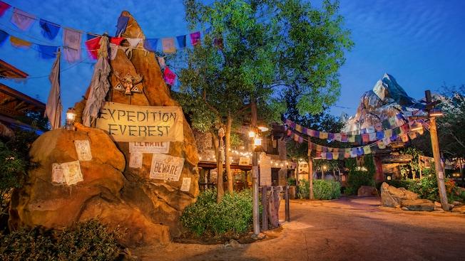 Top 5 Thrill Rides at Walt Disney World