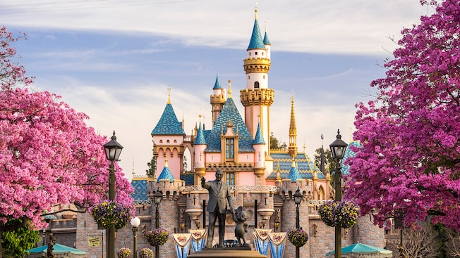 Disney on a Budget: 8 Money Saving Tips