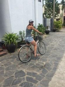 $1 bikes!