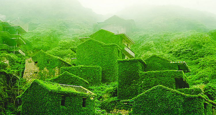 An Abandoned Island In China Has Been Overtaken By A