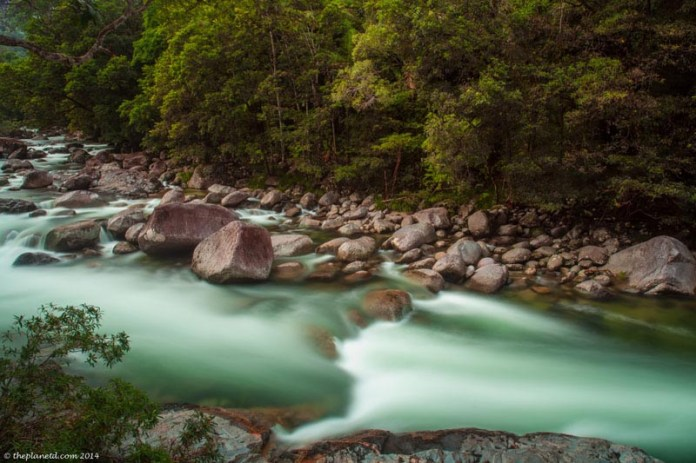 places to see in australia daintree rainforest