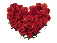 how many roses for valentines day