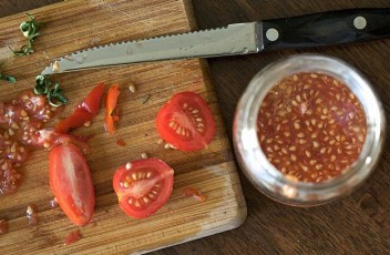 How-To-Save-Tomato-Seeds
