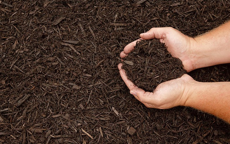 best natural mulch