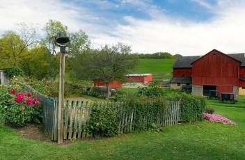 farm-1936639_1280