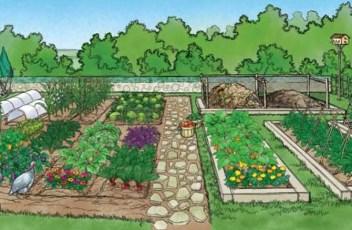 Sustainable-Garden