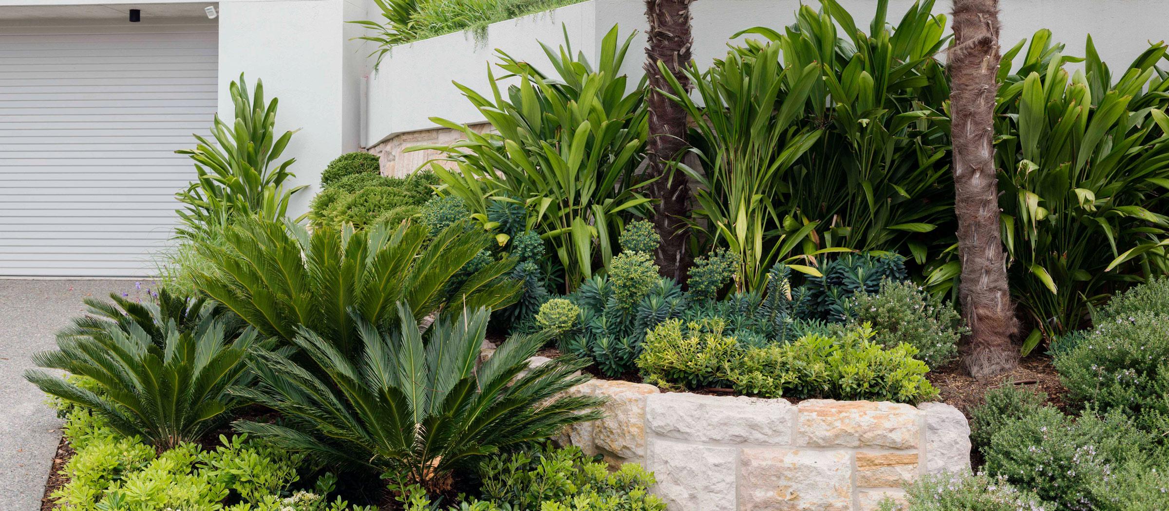Secret Gardens A Book By Matthew Cantwell The Planthunter
