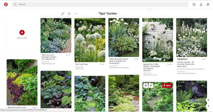 Example of plant imagery board.