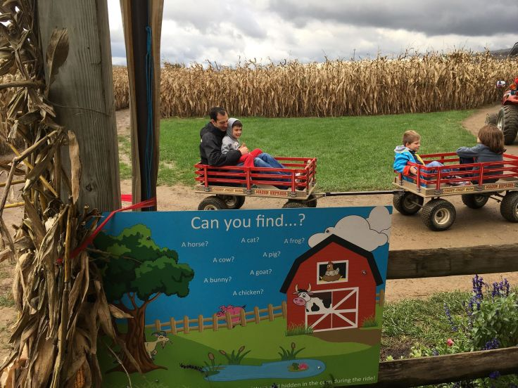 wagon ride.jpg
