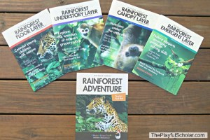 Rainforest Adventure (Sneak Peek) with Mother Goose Time