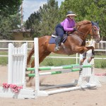 The Plus Equestrian Fashion And Products For The Curvy Hunter Jumper